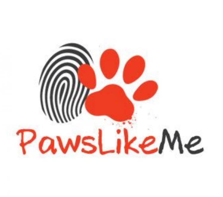 为了让更多的人领养宠物,这个网站做了个人宠相亲配对