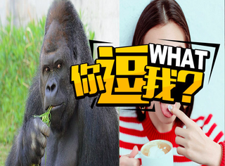"""2017日本流行""""猩猩脸""""美女,这应该是在夸人吧~"""