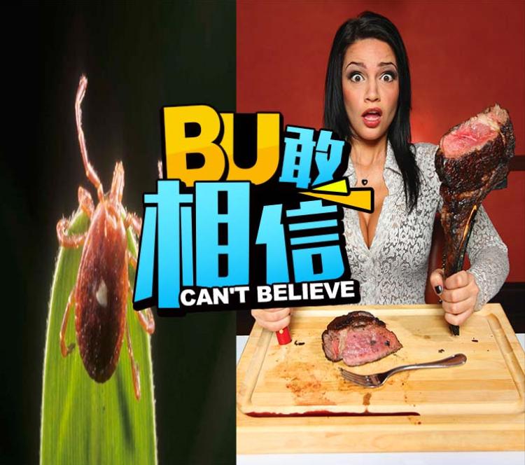 只要被这种虫子咬一口,你这辈子就别想再吃肉了!