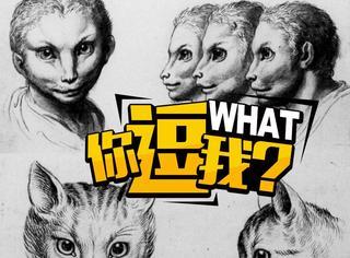 如果人是这些动物变的,我们会长成什么样子