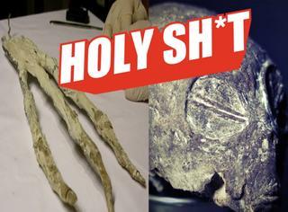 【Holy Shit】秘鲁惊现神秘三指手掌和头颅!外星人还是古巨人?