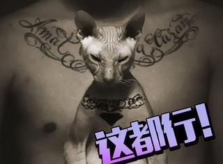他给爱猫纹身,遭炮轰