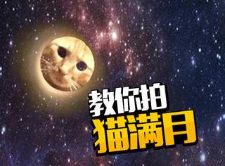 教你把喵星人送上月亮,聪明人才拍得出的猫满月