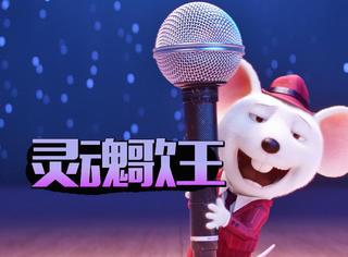 不说故事不讲梦想不卖惨,选秀歌手就该像这只小白鼠一样!