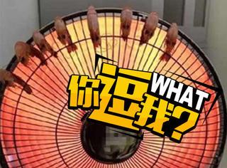 疯狂吃货突发奇想,用小太阳电暖扇烤虾