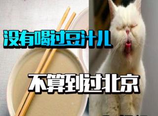 橘子喝了口老北京涮(豆)锅(汁)水,差点没把小胃胃吐出来