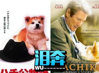 中国翻拍《忠犬八公》?看这部电影,哭晕是最简单的事!