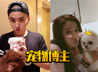 张梓琳的yoyo,关晓彤的小胖儿,明星给宠物开的微博都在发啥?