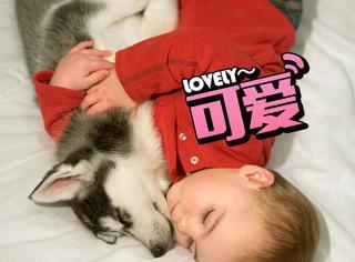 小孩和狗狗一起睡觉,还有比这更萌的画面吗