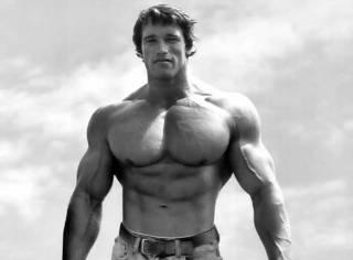 健身也健脑,型男书房也要Man爆!