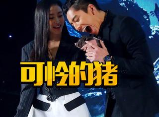 《鲛珠传》发布会,王大陆继吃孩子之后现场表演吃猪