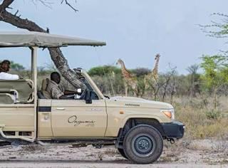 陈柏霖一人一车一狗横穿纳米比亚简直帅炸,《花少3》太有看头!