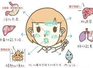 脸上不同部位长痘痘反映出了哪些身体问题?