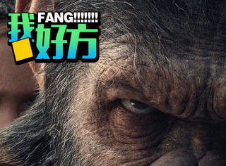 预告片太会玩!《猩球崛起3》这只会说话的猩猩要回来复仇了
