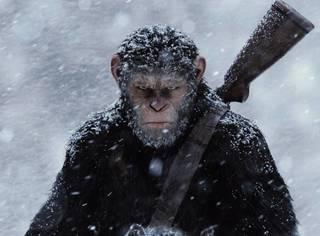 《猩球崛起3》终极预告曝光,燃到抖腿!