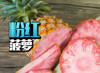 这款粉红菠萝就要上市了,感觉被萌到了