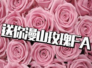 端午三天去哪玩?来一场浪漫的玫瑰之旅吧!