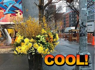 街头垃圾桶里插满了花,背后原因有点暖