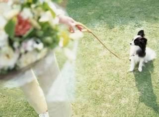 跟对的人结婚有多重要?看完这些真实案例惊呆了!