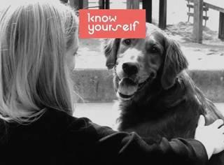 抑郁时你需要一种爱的链接,哪怕只是来自一只狗 | KY故事:狗狗救了抑郁的我