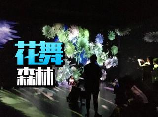 如果你朋友圈没什么可发的了,那么来北京看这个展吧