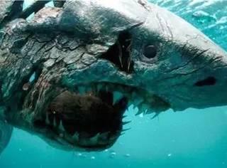 《加勒比海盗5》僵尸鲨鱼很牛逼?40年前就有人拍过了!