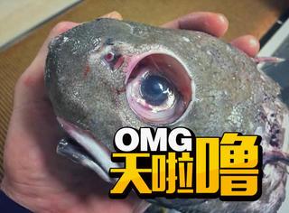 看了这些深海怪鱼,再也不想吃海鲜了