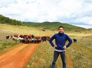 来我家的20亩高原草甸,做一天彝族牧羊人。