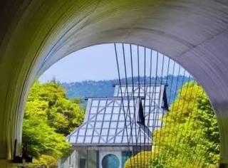 这座日本美术馆有多惊艳?LV年度时尚大秀都选在这儿