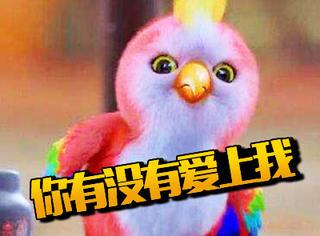 【表情包】《楚乔传》里的鹦鹉成了网红?会动的表情包太好用了吧~