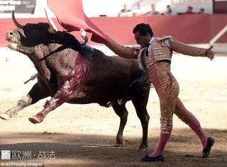 西班牙斗牛士在表演中惨死,这项国粹运动在优雅背后隐藏着的是人性险恶啊