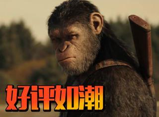《猩球崛起3》北美口碑解禁,媒体们都夸它好看,真的吗?