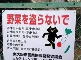 """日本街头这些""""奇怪的中文"""",绝对让你忍笑忍到内伤!"""