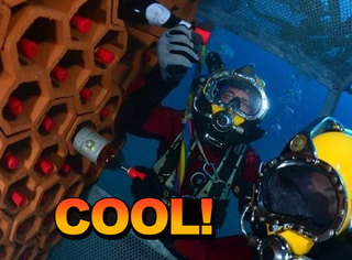 把葡萄酒放海里存2年会怎样,他们试了试