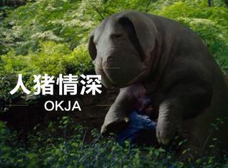 """为了救这只叫""""玉子""""的巨型猪,小女孩不惜把纽约闹得天翻地覆!"""