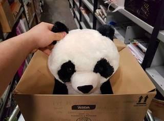 这个小男孩和熊猫玩具的故事本让人心碎,但故事的结局意外的温暖人心...