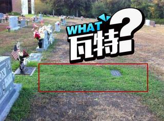 妈妈不明白为啥只有儿子坟墓前的草是绿色的,真相感人
