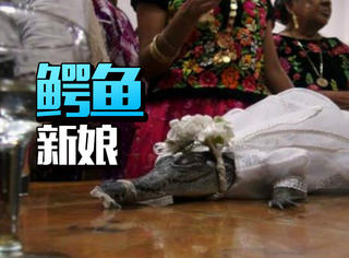 墨西哥一市长与鳄鱼举办婚礼,这是传统