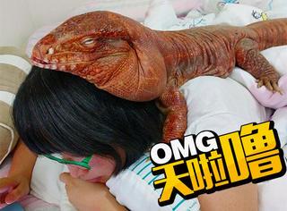 别人养猫养狗,她的宠物竟是只巨型蜥蜴