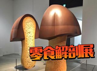 日本人气零食解剖展:用另一种角度看到的世界很精彩!