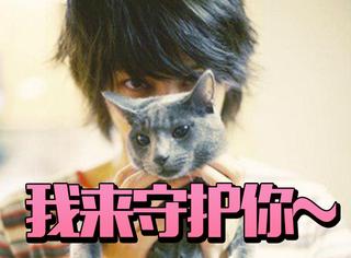 """俄罗斯蓝猫""""韩J希范"""":被金希澈宠出名的高冷猫猫~"""