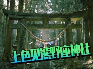 当熊本部长来到了住着妖精的森林,熊本县,你也太神奇了吧!
