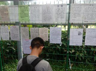 我们去了深圳相亲角,刚一报年龄就被拒绝了……