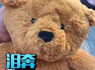 这只泰迪熊体内藏了一段录音,还有一个催泪的故事
