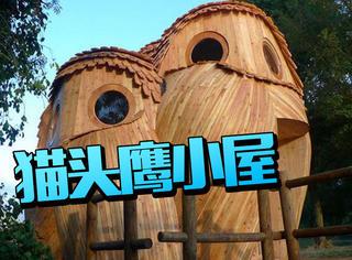 外观超萌的猫头鹰小屋,还能免费入住!