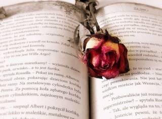 当你一无所有时,才能看清周围的人,寒冬落魄你不在,春暖花开你是谁?