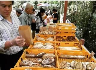 旅食记:清迈竟然有这样一个面包集市,而且惊喜的不止法式面包!