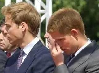 戴安娜逝世20周年,威廉、哈里王子首次公开最后通话