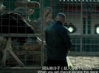 【一张截图猜电影】到底是北京的人在生活,还是人在北京生活