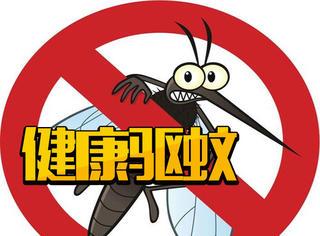夏日蚊虫不用怕,十种植物帮你健康驱蚊!